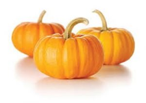 ACB MODIFIED PUMPKIN ENZYME